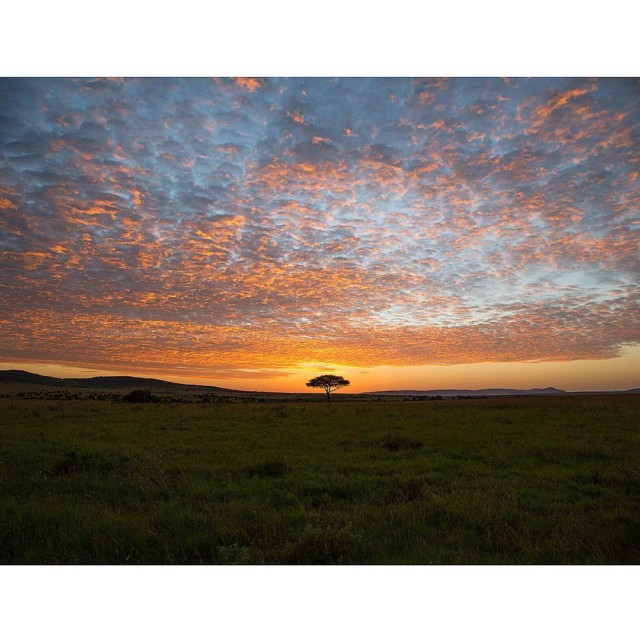 A beautiful sunrise at SalasCamp discoverthesafaricollection kenya whyilovekenya masaimara safarihellip