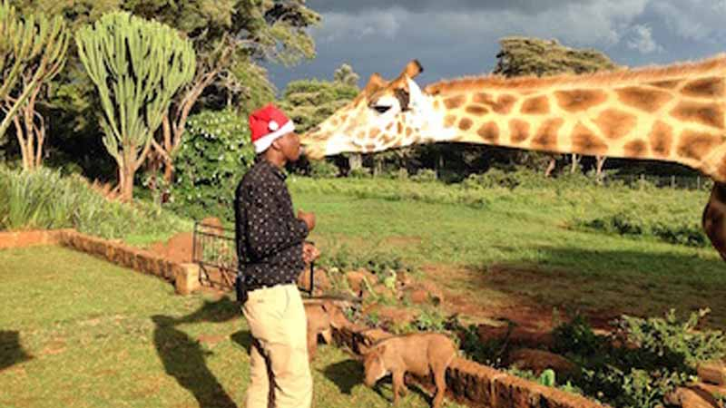 FROM KENYA WITH LOVE THIS CHRISTMAS - The Safari Collection