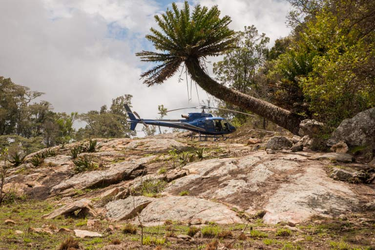 Helicopter amongst the ancient cycads (Photo credit- Lorna Buchanan-Jardine)