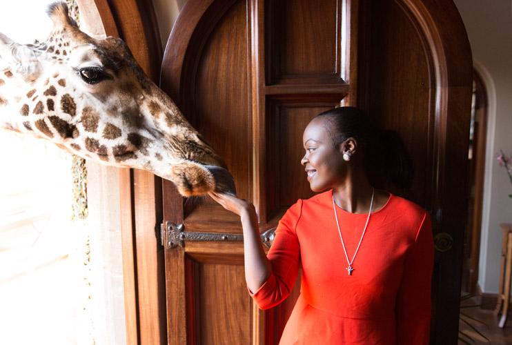 Earclips Giraffe Africa